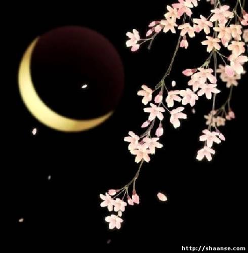 завтра 8 октября -полное лунное затмение совпадет с полнолунием! 349792095